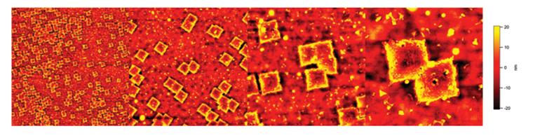 AFM ― Atomic Force Microscopy